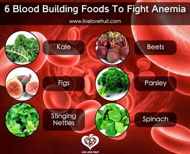 Blood Building Foods