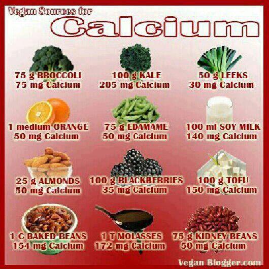 Hgh Calcium Foods