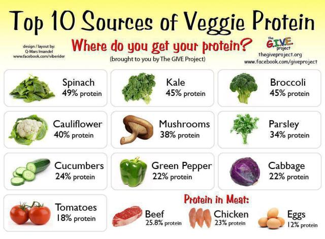 High Veg Protein Foods